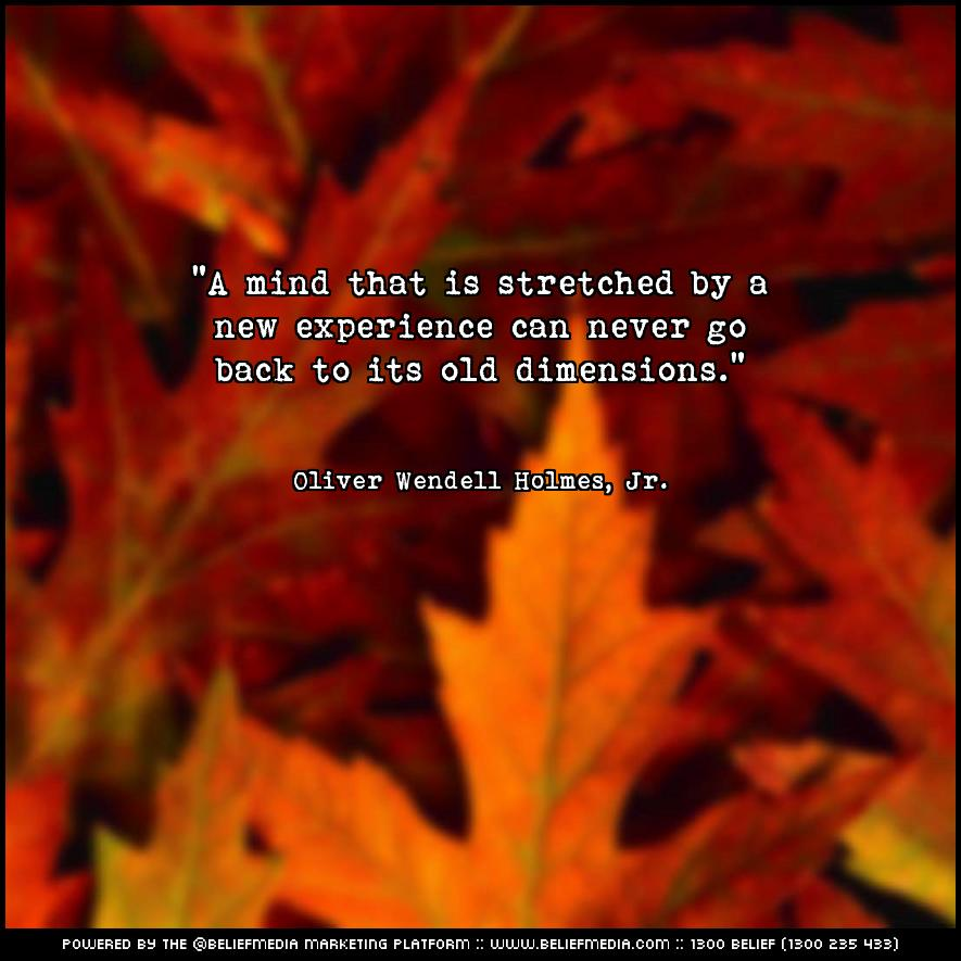Quote from Oliver Wendell Holmes, Jr. about Experience