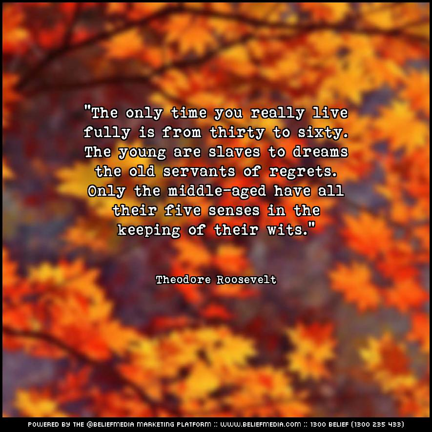 Quote from Theodore Roosevelt about Dreams